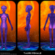 Taurii Female Concept by David Collins