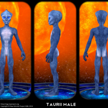 Taurii Male Concept by David Collins