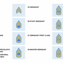 Enlisted Insignias